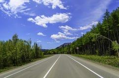 Route dans la forêt d'été Images stock