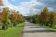 Route dans la forêt d'autamn photo stock