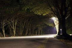 Route dans la forêt foncée Images stock