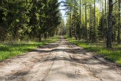Route dans la plantation de woods Photo stock