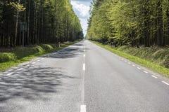 Route dans la plantation de woods Image stock