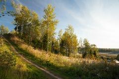 Route dans la zone rurale Photo libre de droits