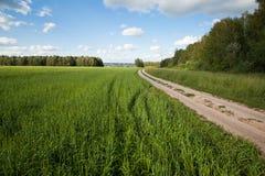 Route dans la zone rurale Images libres de droits