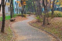 Route dans le jardin Photos libres de droits