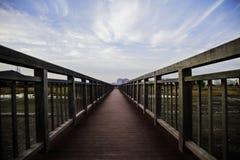 Route dans le jardin Image libre de droits
