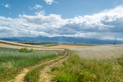 Route dans le medow Photo stock