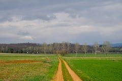 Route dans le paysage de campagne en Toscane, Italie images stock