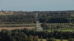 Route dans le tir cinématographique de forêt au-dessus de la route de gravier dans la forêt de pin banque de vidéos