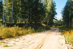 Route dans les bois, été Photographie stock libre de droits