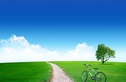 Route dans les domaines Photo libre de droits