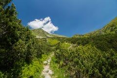 Route dans les montagnes Image stock
