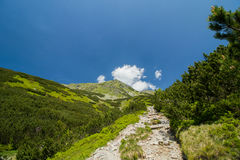 Route dans les montagnes Images stock
