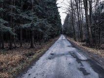 Route dans les montagnes d'automne images libres de droits