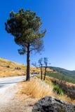 Route dans les montagnes de Serra da Estrela photos stock