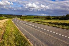 Route dans les vignobles Photos libres de droits