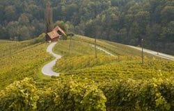 Route dans une forme d'un coeur, Maribor, Slovénie Photos stock