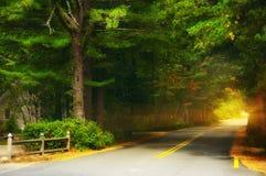 Route dans une petite ville dans la forêt Etats-Unis Photos libres de droits