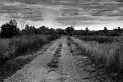Route de B&W octobre photos libres de droits