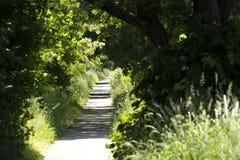 Route de bicyclette chez le Lac Balaton Image libre de droits