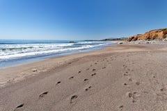 Route de Côte Pacifique de l'itinéraire 1 d'état de l'océan pacifique - la Californie, la Californie Image libre de droits