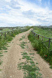 Route de campagne avec la frontière de sécurité en bois Photos libres de droits