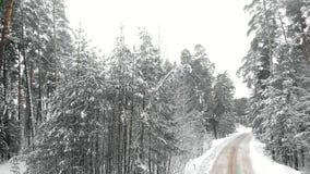 Route de campagne d'hiver dans une forêt neigeuse, vue aérienne avec le bourdon clips vidéos