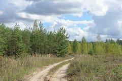 Route de campagne dans la forêt Photos stock