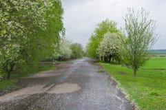 Route de campagne dans le village à distance Image stock