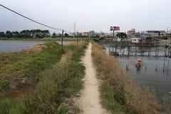 Route de campagne dans le village de l'eau Photos libres de droits