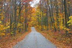 Route de campagne en automne Images libres de droits