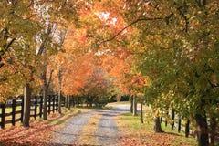 Route de campagne en automne images stock