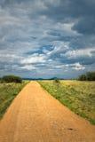 Route de campagne, herbe verte et ciel bleu Image libre de droits