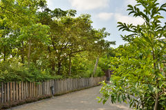 Route de campagne le long d'une barrière en bois Photo libre de droits