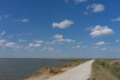 Route de campagne menant le long du lac avec des roseaux Photo libre de droits