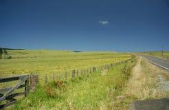 Route de campagne Nouvelle Zélande images stock