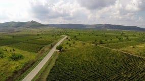Route de campagne par les vignobles quelque part dans Dobrogea, Roumanie banque de vidéos