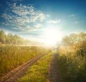 Route de campagne parmi des champs au lever de soleil sur le ciel de fond Image stock