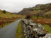 Route de campagne, snowdonia, Pays de Galles, R-U Photographie stock libre de droits