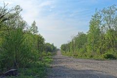 Route de campagne un jour ensoleillé d'été photo libre de droits