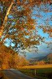 Route de crique de Cades. Photo stock