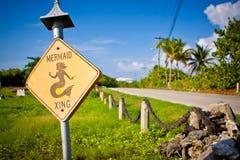 Route de croisement de sirène Photo stock