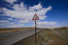 Route de désert avec un signe de chameau image libre de droits