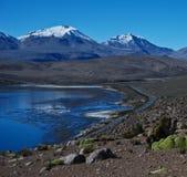 Route de désert par un lac Image libre de droits