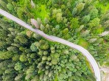 Route de route dans la forêt, vue d'en haut photo libre de droits