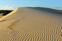 Route de dunes de sable de désert au coucher du soleil Photographie stock libre de droits