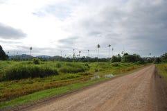 Route de gravier dans les jungles Papouasie-Nouvelle Guinée photographie stock