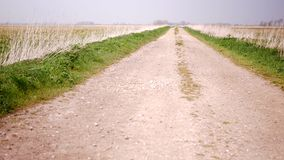 Route de gravier entre deux champs banque de vidéos