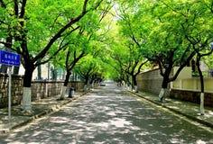 Route de Jiayuguan dans la ville de Qingdao, Chine Photographie stock