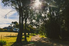 Route de Jindabyne dans la réservation de Boronia à Kingston, Tasmanie Image stock