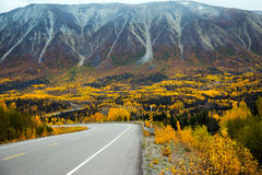 Route de l'Alaska, territoires de Yukon, Canada photographie stock libre de droits